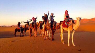 camel trek marrakech,camel trek from marrakech,camel trekking experience,camel ride merzouga,morocco camel trekking tours,morocco sahara camel tours