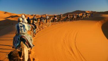 5 nights in marrakech