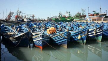 tours from marrakech to essaouiraday trip to essaouiraday trip to essaouira from marrakechessaouira day tripessaouira day trip marrakech.marrakech to essaouira 1 364x205 - What You'll Do on Essaouira tours to shara desert  4 days