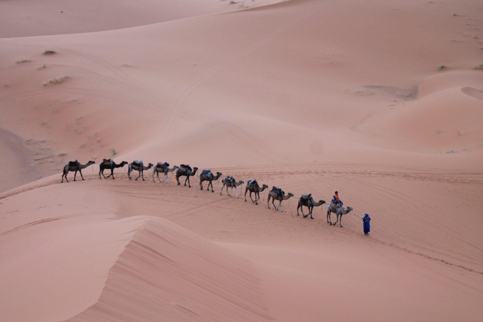andrea cappiello nAmAYm1h Zo unsplash 1536x1024 - Guide Morocco Tours