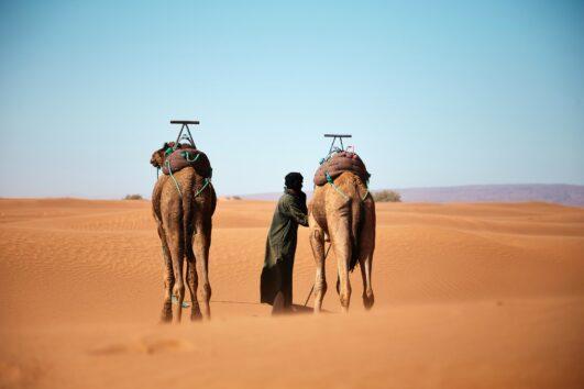 Zagora Morocco Desert | Zagora luxury desert camp