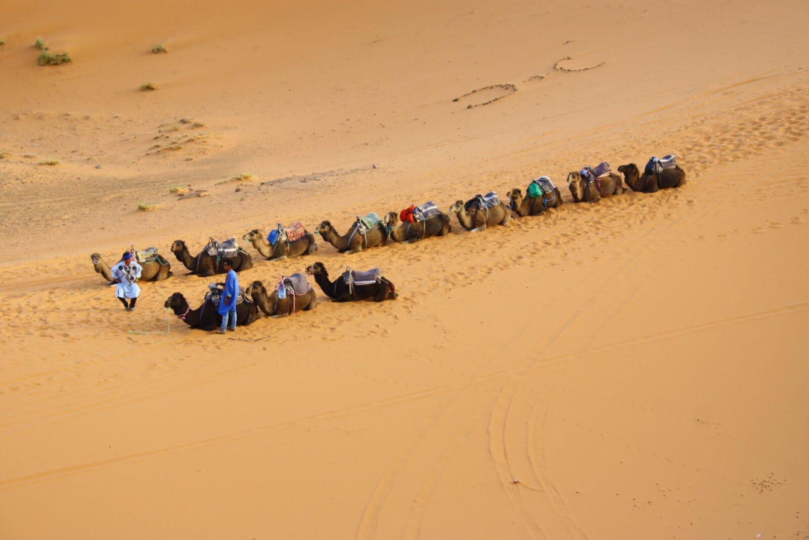 savvas kalimeris 56VKUQSsdPU unsplash 1 1536x1024 - Guide Morocco Tours