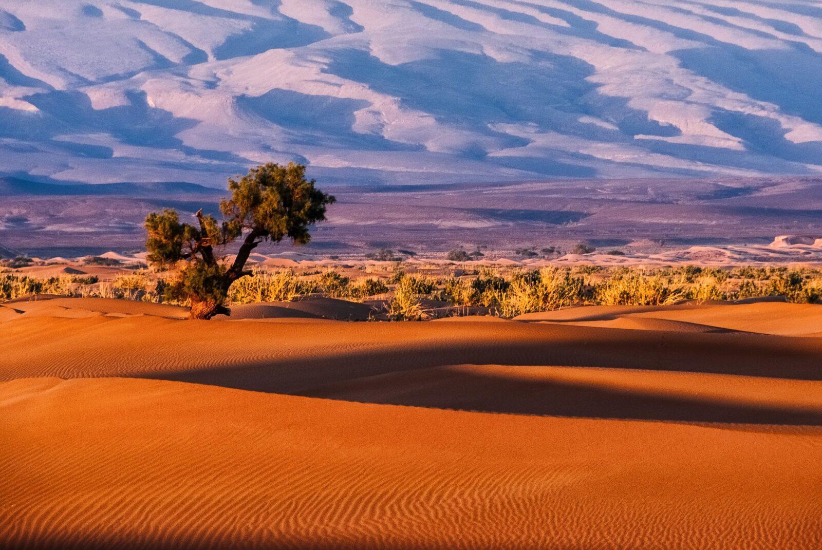 sergey pesterev 9 5 WYEBDz0 unsplash 1536x1028 - Guide Morocco Tours